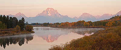Scenic landscape with aspen trees - p575m804988 by Sven Halling