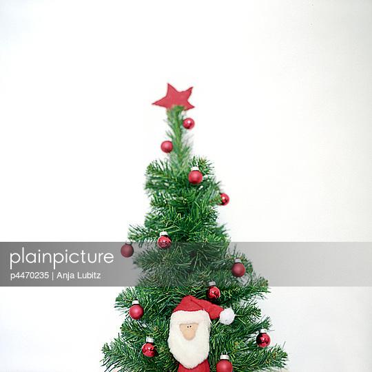 Christmas star - p4470235 by Anja Lubitz