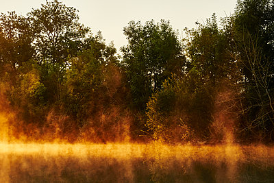 Trees and channel at sunset - p1312m2262363 by Axel Killian