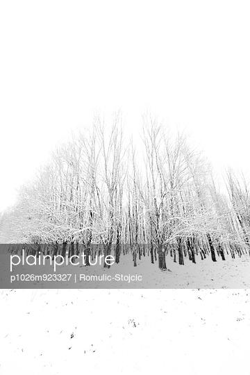 Slavonia - p1026m923327 by Romulic-Stojcic