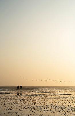 Wandern im Wattenmeer - p1443m1539235 von SIMON SPITZNAGEL