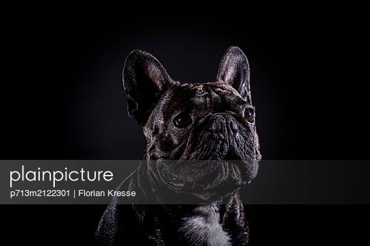 p713m2122301 by Florian Kresse