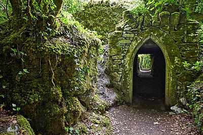 Connemara - p1272m1460806 von Steffen Scheyhing
