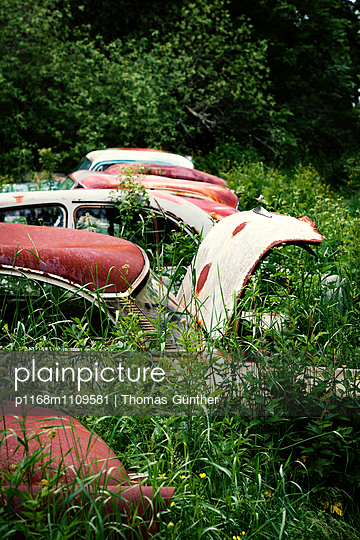 Grass overgrowing rusty cars  - p1168m1109581 by Thomas Günther