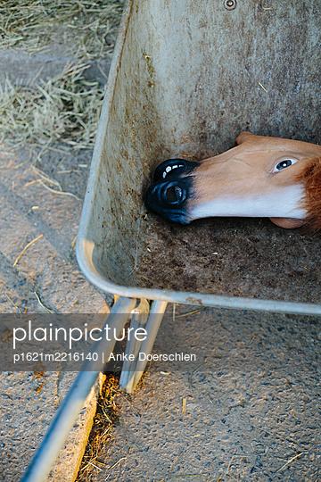 Horse - p1621m2216140 by Anke Doerschlen