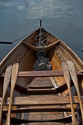 Sport Rowing - p1003m917136 by Terje Rakke