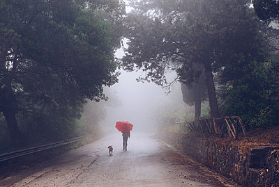 Friends in the fog - p1623m2209155 by Donatella Loi