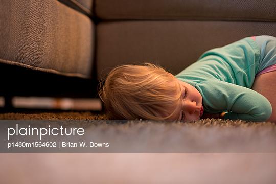 p1480m1564602 von Brian W. Downs