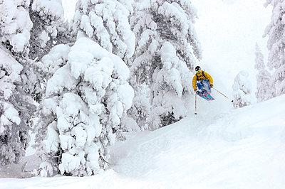 Skifahrer jumping through the deeply snowed in forest, Kaltenbach, Zillertal, Austria - p1316m1202840 by Michael Neumann