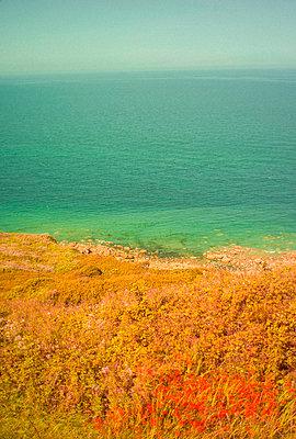 Normandy landscape - p1654m2253697 by Alexis Bastin