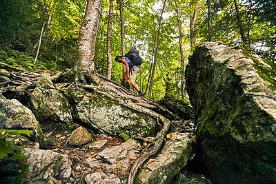 A Man Hikes Along The Appalachian Trail - p343m1203849 by Josh Campbell