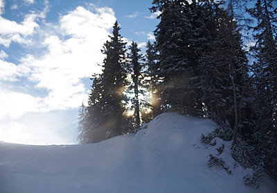 Backlight in the mountains - p8500062 by FRABO