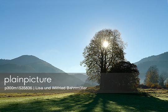 p300m1535836 von Lisa und Wilfried Bahnmüller