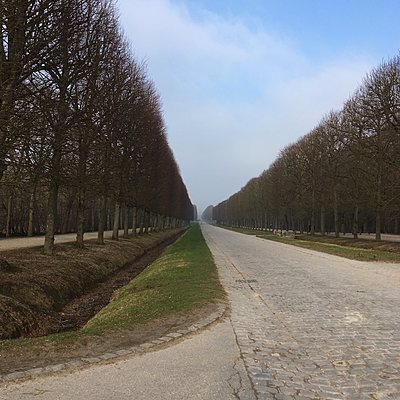 Deserted alley, Versailles, Paris - p1401m2260489 by Jens Goldbeck