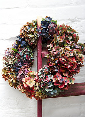 Autumn wreath on whitewashed wall;  Isle of Wight;  UK - p349m920053 by Rachel Whiting