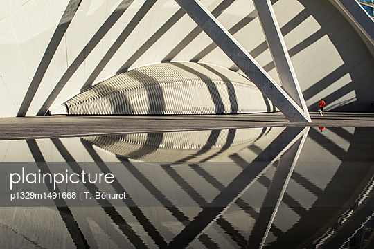 City of arts and sciences - p1329m1491668 by T. Béhuret