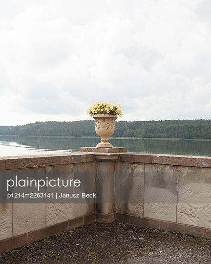Flower vase - p1214m2263141 by Janusz Beck