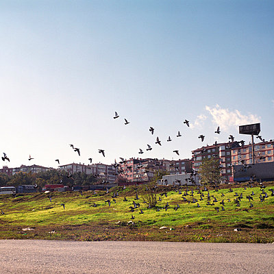 Suburbs of Istanbul - p0750268 by Lukasz Chrobok