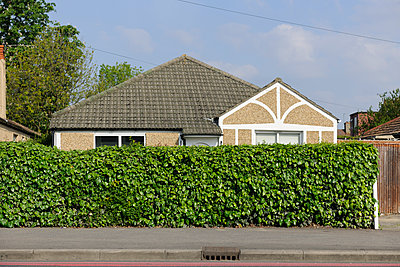Bungalow behind green hedge - p1048m1173549 by Mark Wagner