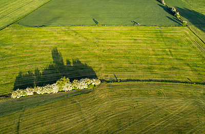 Field border, bushes between two fields, aerial view - p1132m2185395 by Mischa Keijser