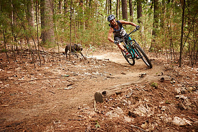 A woman and her dog mountain biking at the Russell Mill trail network in Massachusetts.  - p343m1203841 by Josh Campbell
