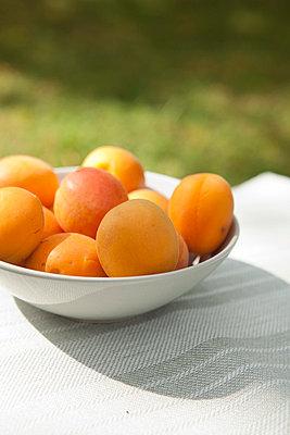 Fresh apricots - p454m739652 by Lubitz + Dorner