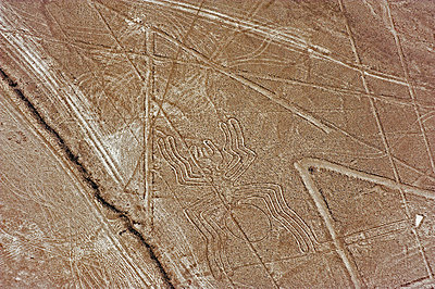 Spider, Lines and Geoglyphs of Nasca, UNESCO World Heritage Site, Peru, South America - p8713796 by Christian Kober