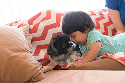 Baby playing with pet dog on sofa - p924m1155159 by Raphye Alexius