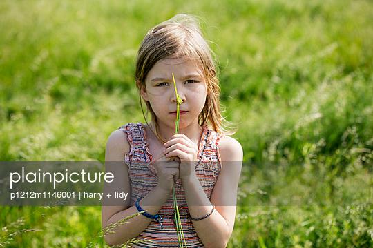 Mädchen bastelt mit Grashalmen und Wildblumen - p1212m1146001 von harry + lidy