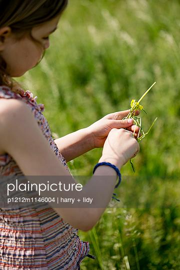 Mädchen in der Wiese bastelt mit Grashalmen und Wildblumen - p1212m1146004 von harry + lidy