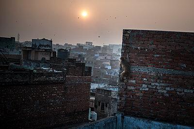 Varanasi - p1007m1060062 by Tilby Vattard