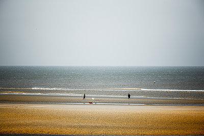 Strand in der Normandie - p248m1216768 von BY