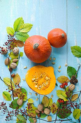 Autumnal arrangement with Hokkaido pumpkins, nuts, rosehips and autumn leaves - p300m2079177 von Achim Sass