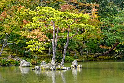 Garden grounds, Zen Buddhist temple Kinkaku-ji (Temple of the Golden Pavilion), AKA Rokuon-ji (Deer Garden Temple), Kyoto, Japan - p429m2074488 by PhotoStock-Israel