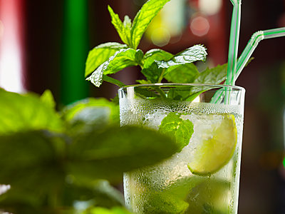 Beverage with mint - p851m2073204 by Lohfink