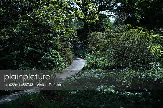 Weg im Garten - p1422m1486743 von Vivian Rutsch