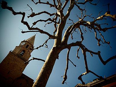 Kirchturm in Altstadt mit Platane - p1320535 von Peer Hanslik