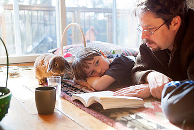 A pet rabbit hops around while a father reads to his seven-year-old  boy - p343m1168097 by Laurie Swope