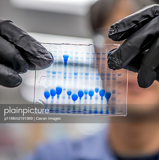 DNA samples for bioscience research - p1166m2191969 by Cavan Images