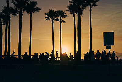 People by palm trees at sunset in Los Angeles, USA - p1350m1423209 by Luxy Images