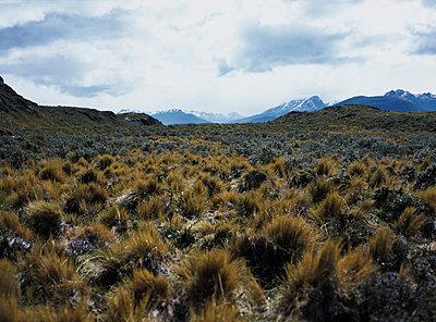 Chile, Feuerland - p2683086 von Christof Mattes