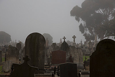 Tombstones at cemetery against clear sky, Melbourne, Victoria, Australia - p301m976102f by Tobias Titz