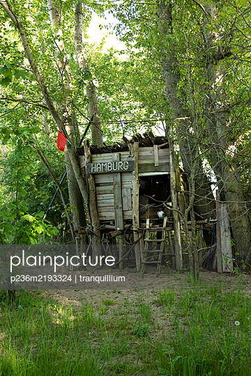 Home-made wooden cabin in the forest - p236m2193324 by tranquillium
