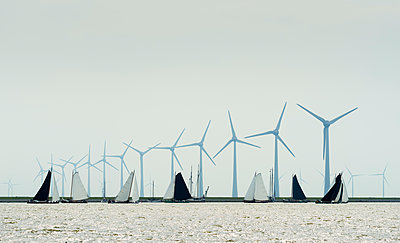 Flat-bottom freight ships participating in traditional 'Skûtsjesilen' sailing race, large wind turbines in background, Lemmer, Friesland, Netherlands - p429m2145839 by Mischa Keijser