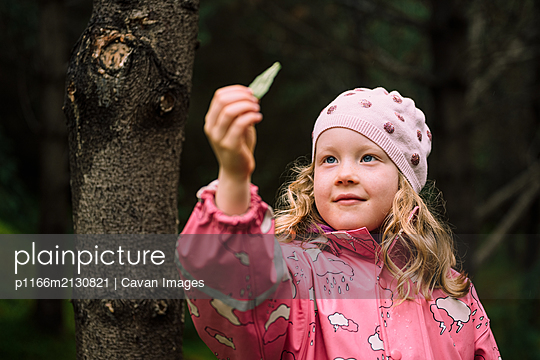 Cute little girl examining leaf in woods - p1166m2130821 by Cavan Images