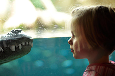 Girl with crocodile - p262m963268 by Philine Stehling