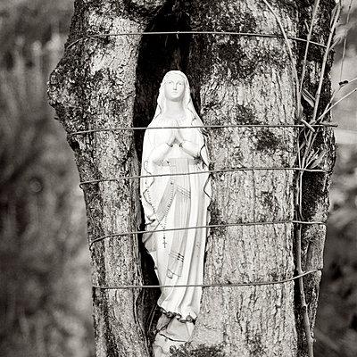 Madonna im Baum - p5450031 von Ulf Philipowski