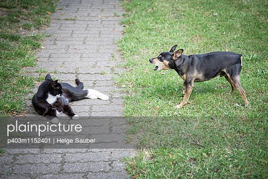 Nachbarschaftsstreit - p403m1152401 von Helge Sauber