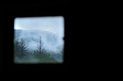 Blick in den Wald - p8290063 von Régis Domergue