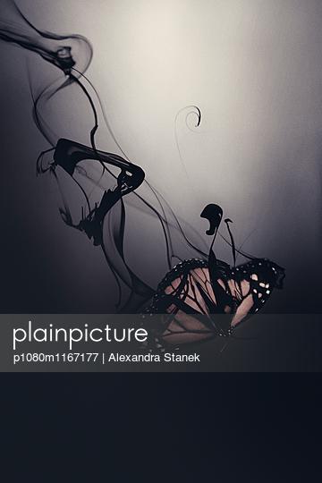 p1080m1167177 von Alexandra Stanek